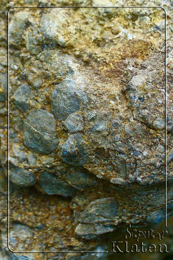 Legenda Watuprau (Batu Perahu) di Gunung Gajah, Bayat, Klaten  05+watuprau+bayat