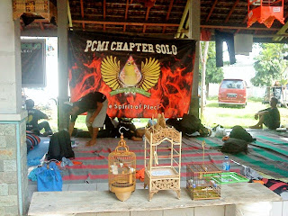 PCMI Chapter Solo