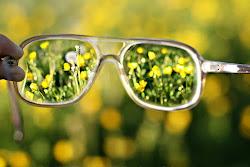 mira la vida con ortos ojos