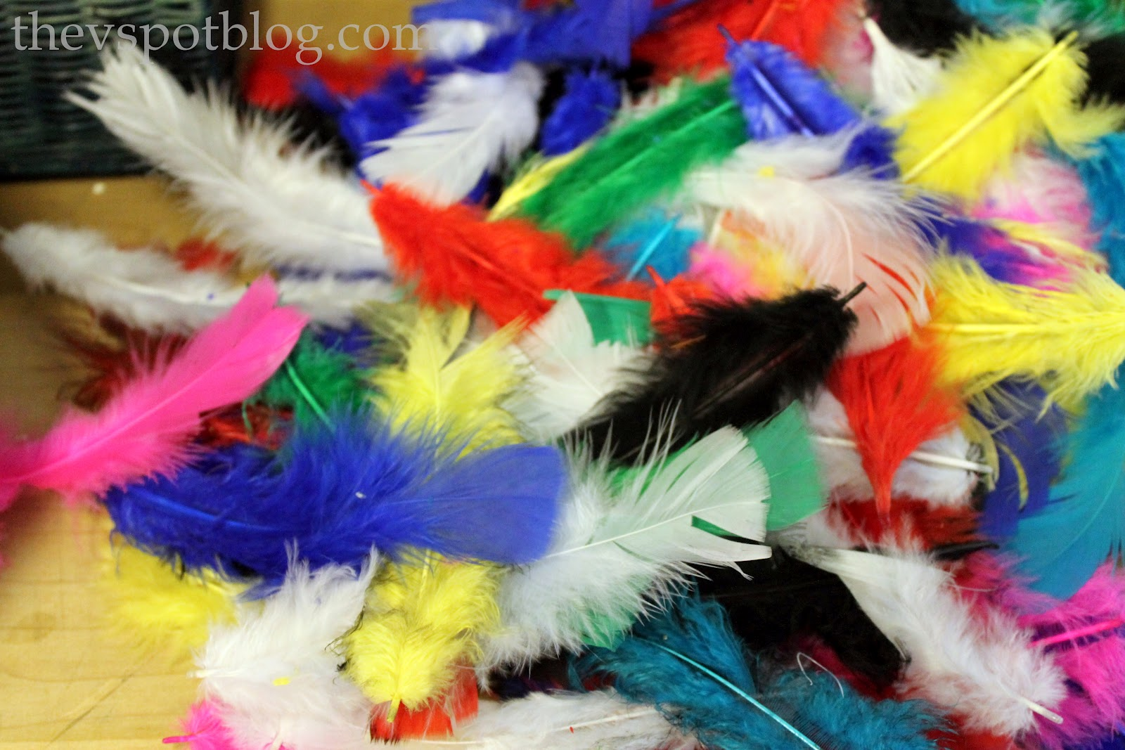 Craft fail i found something that can 39 t be spray painted for Where can i buy feathers for crafts