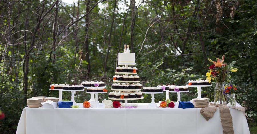 Cocoa Amp Fig Rustic Minnesota Wedding Cupcakes Amp Cake