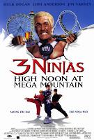 3 ninjas en el parque de atracciones (Tres pequenos ninjas 4) (1998) online y gratis
