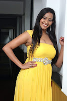 sanchana singh  hot press meet
