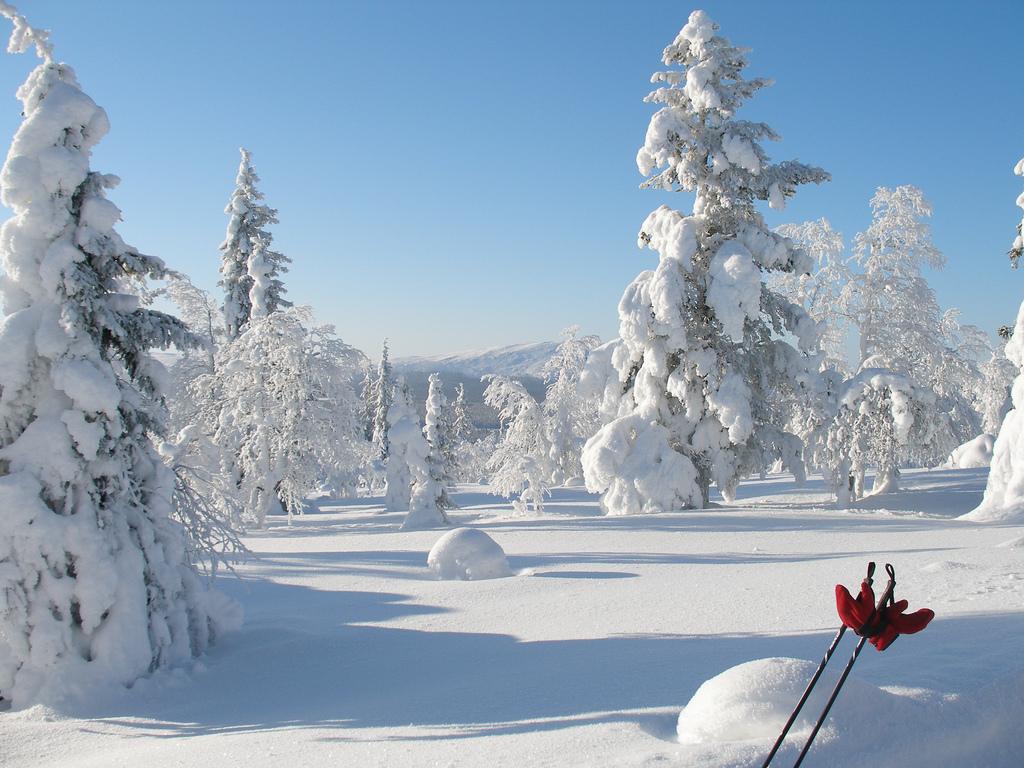 Travel Trip Jou... Finnland