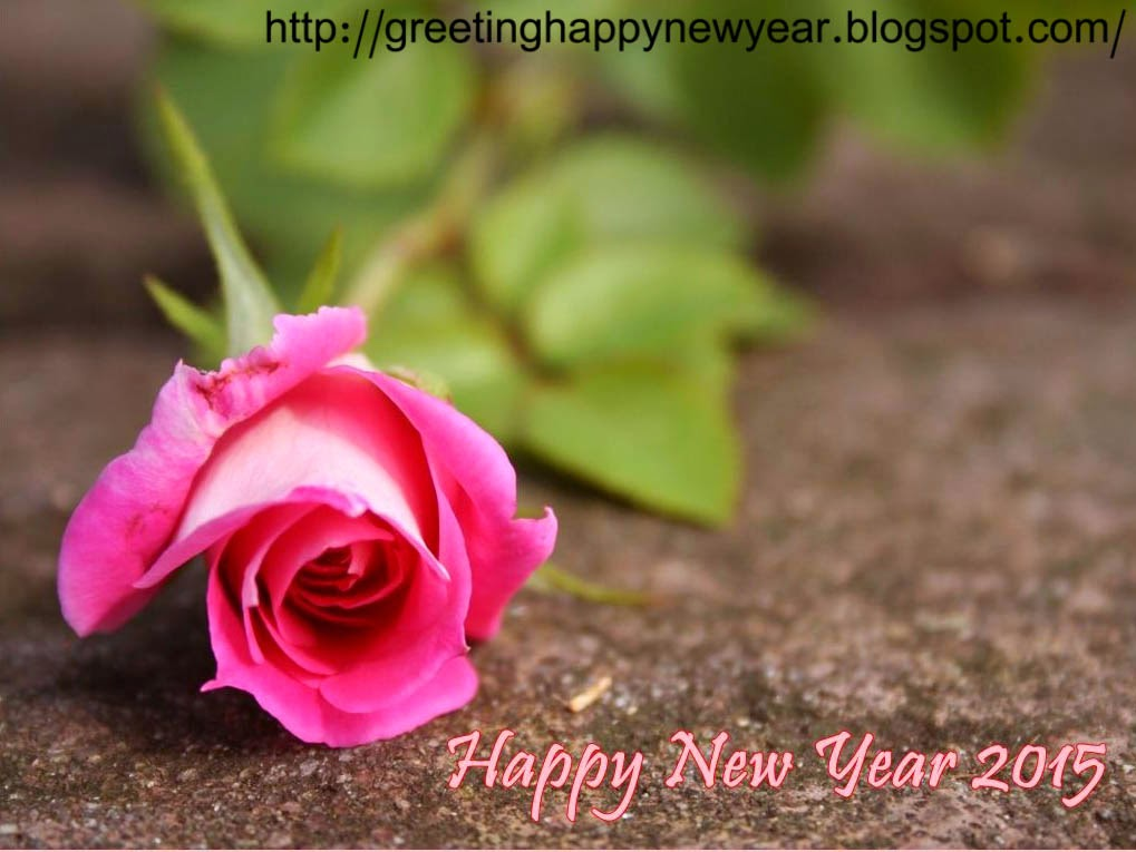Top Class New Year Wishes 2015 – Latest Pictures for Free HD