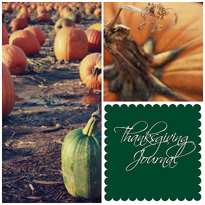 The Thanksgiving Journal {Family Traditions}