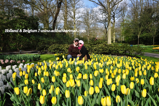 holiday to holland and belgium with premium beautiful at keukenhof surrounded by tulips