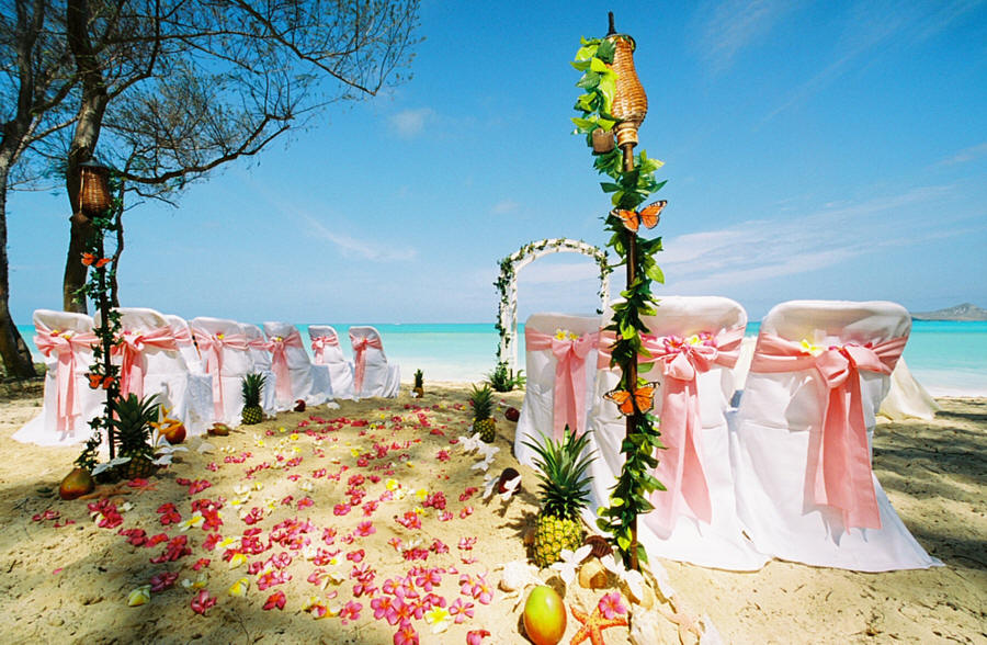 Wedding pictures wedding photos beach wedding photos for Destination wedding location ideas