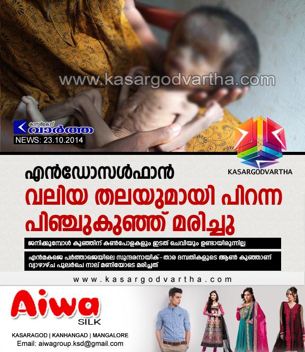 Endosulfan Victim, Obituary, Child, Kasaragod, Kerala, Enmakaje, Endosulfan victim dies.