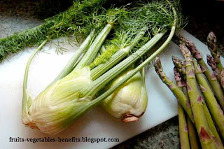 benefits_of_eating fennel_fruits-vegetables-benefits.blogspot.com(7)