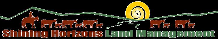 Shining Horizons logo (header)
