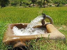 Wasser in der Landwirtschaft