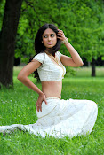Illeana hot in Devudu Chesina Manusulu Movie-thumbnail-4