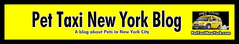 Pet Taxi NYC - Pet Taxi New York's Blog