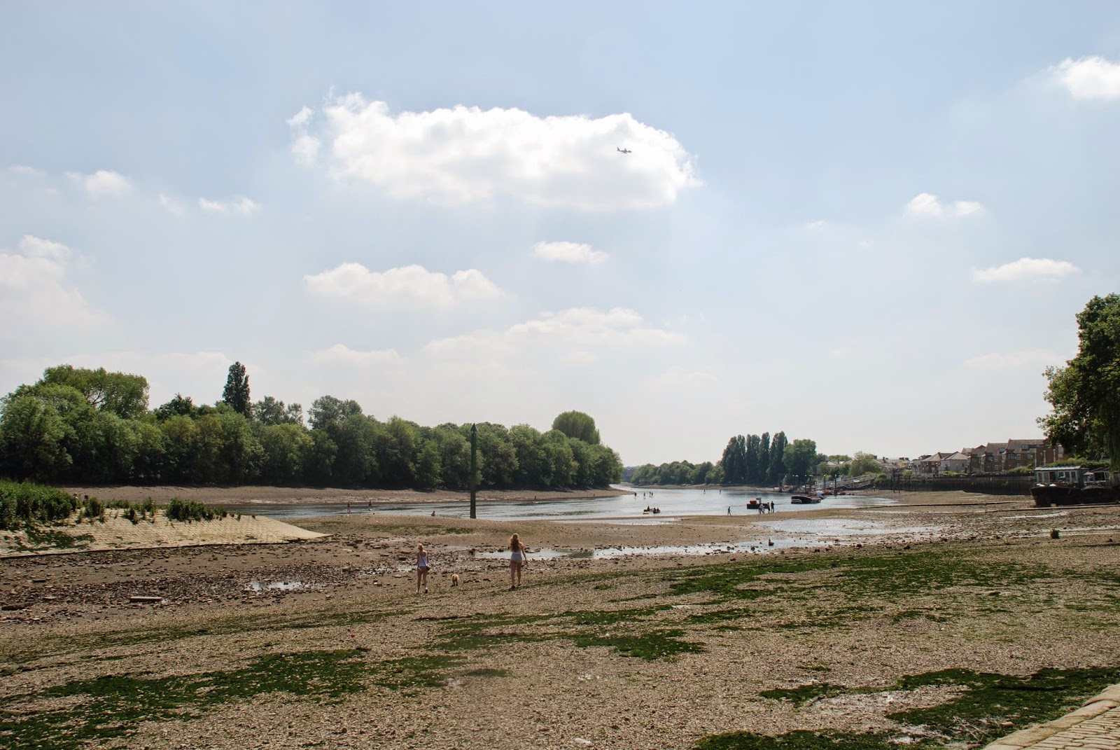 Chiswick Eyot, Thames, London