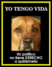 POR LOS DERECHOS DE LOS ANIMALES.