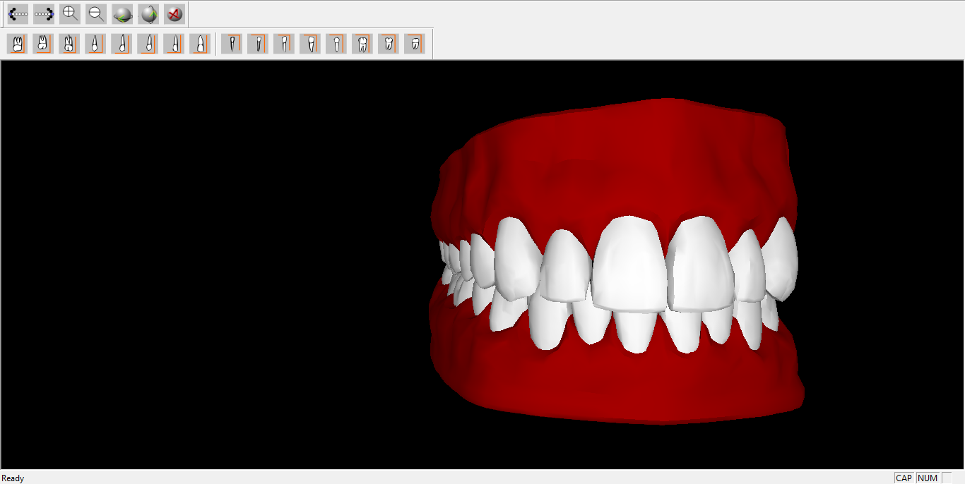 3D Dental Anatomy Simulation for PC