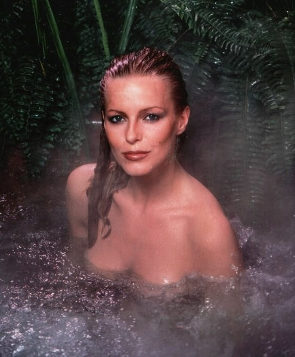 Cheryl ladd celebrity goes beyond
