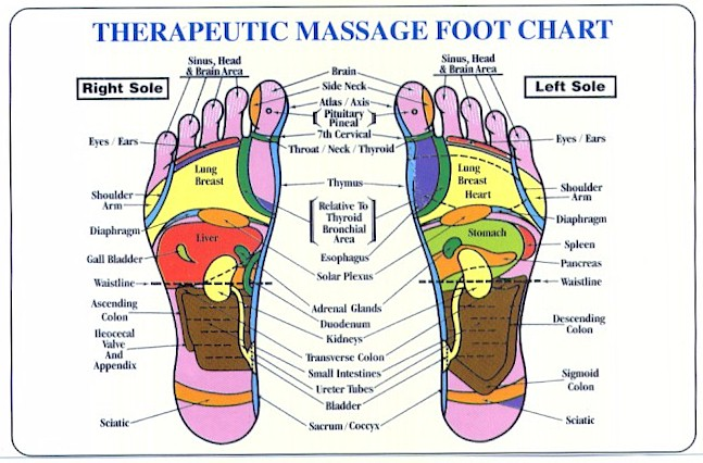 Geeky image within printable reflexology foot chart