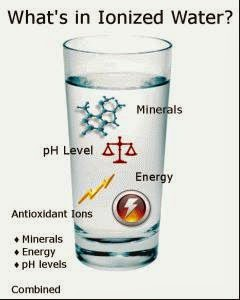 The Properties of Alkaline Ionized Water