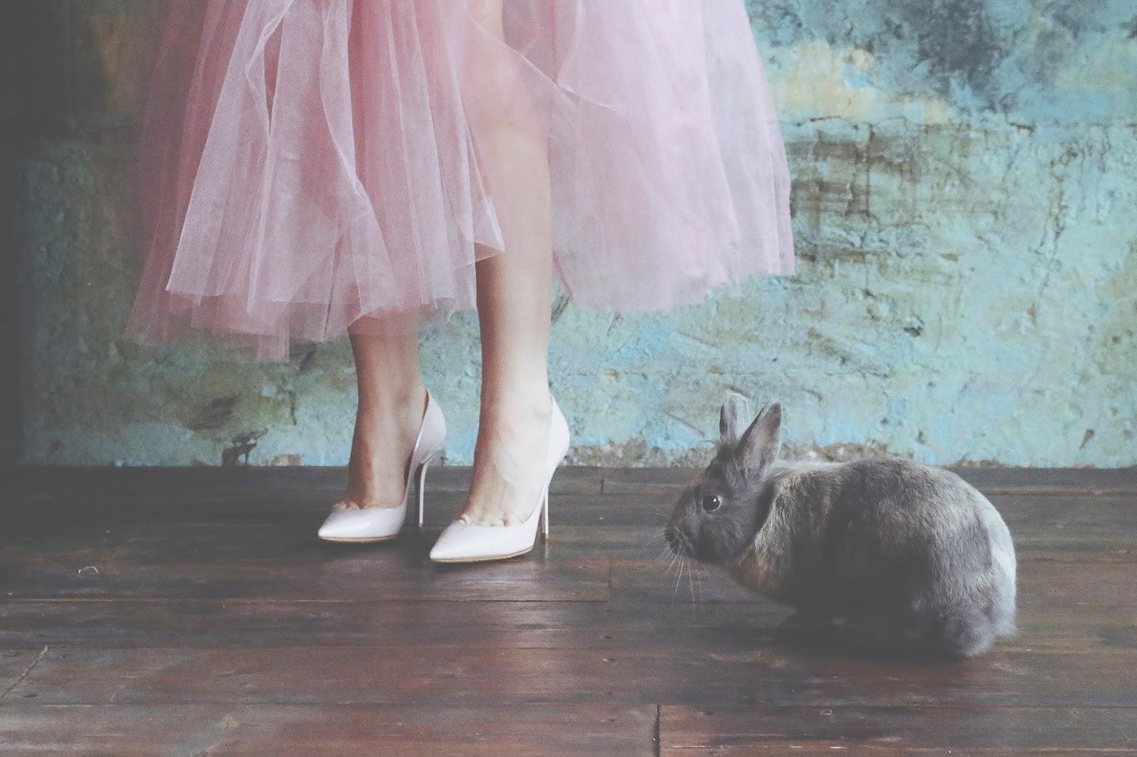 фото с кроликом,идеи для фотосессий, фатиновая юбка,розовые туфли,фотосессия,фотография,фотоискусство,