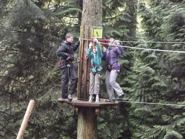 Go Ape Whinlatter safely over