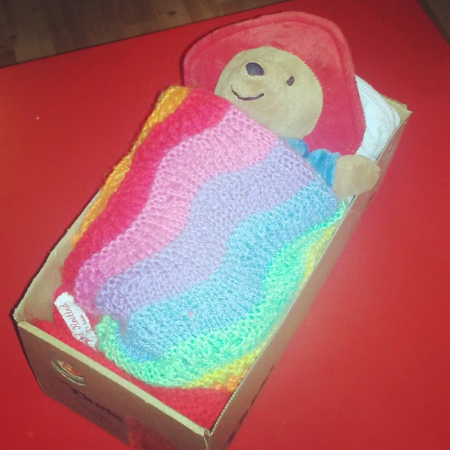 Paddington in bed with rainbow blanket