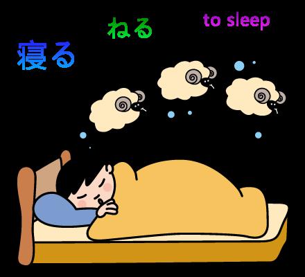 アーニャの日本語教室 conjugation jlpt n5 verbs 寝る to