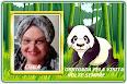 Ursinhos Panda em Png e Gifs