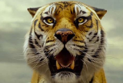 """""""Cuando miras a los ojos de un animal sólo estás viendo tus propios sentimientos reflejados"""" La Vida de Pi"""