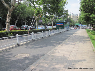 Avenue in Hangzhou
