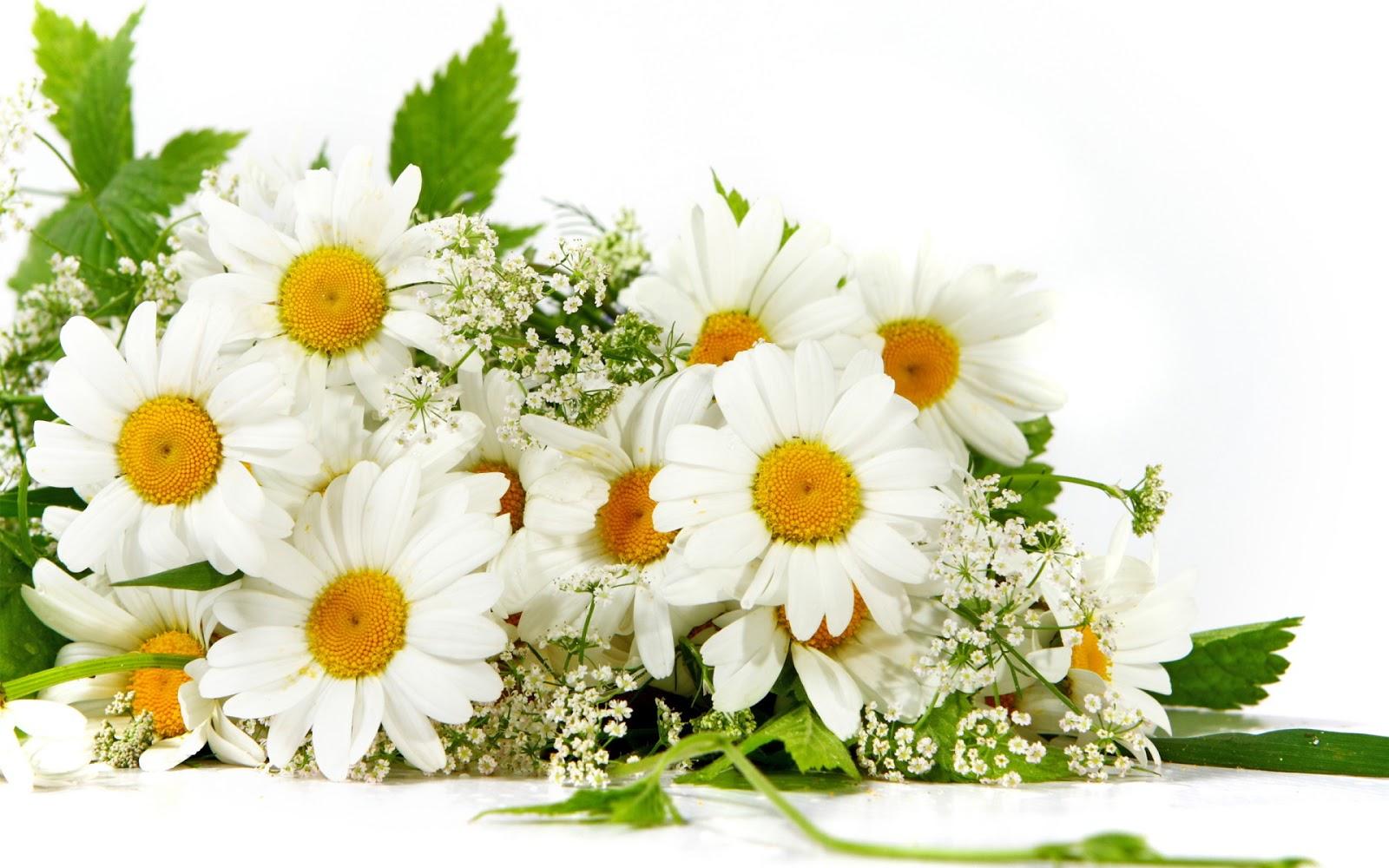 Открытки с пожеланиями хорошего дня для любимого
