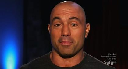 Joe rogan 2013 body