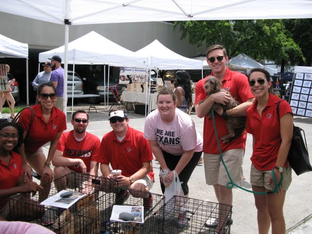 Houston Texan Fans Heart Adopt A Pet Houston
