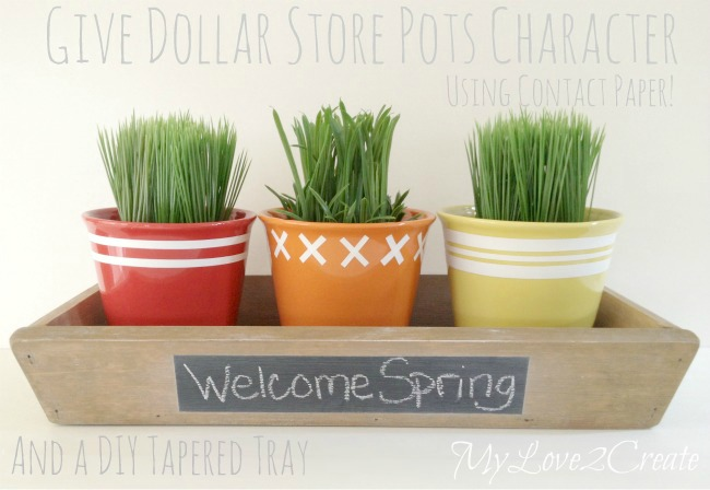 MyLove2Create, tapered tray and dollar store pots