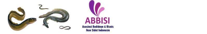 ASOSIASI BUDIDAYA & BISNIS IKAN SIDAT INDONESIA (ABBISI)