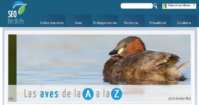 Las Aves de la A a la Z