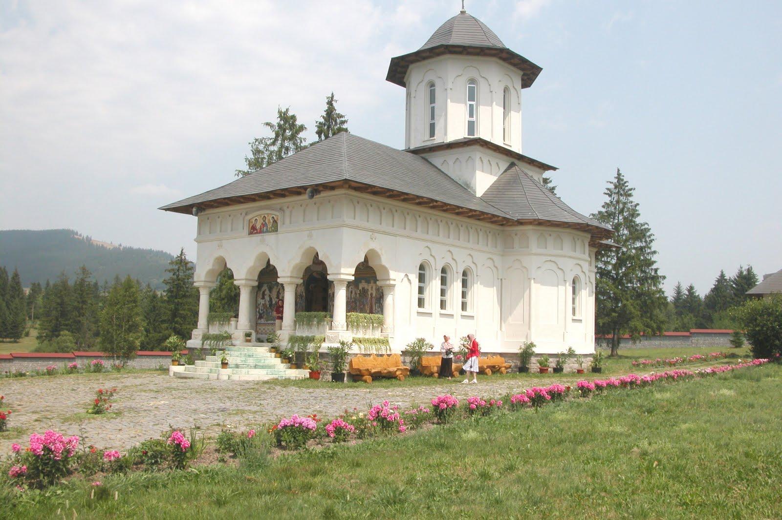 Moldoveanul în pelerinaj