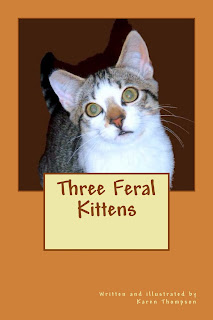 Three Feral Kittens Book Website