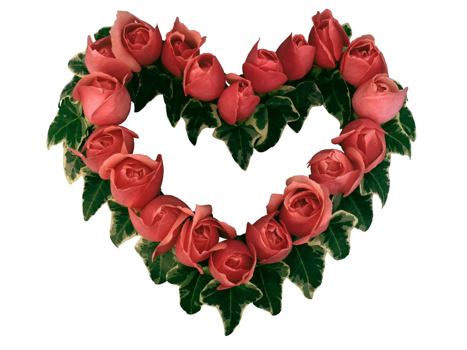 Best Red Rose heart Desktop Wallpaper