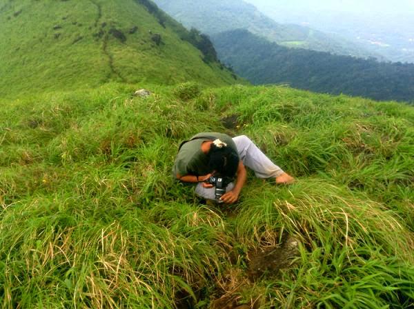 Peak Western Ghats