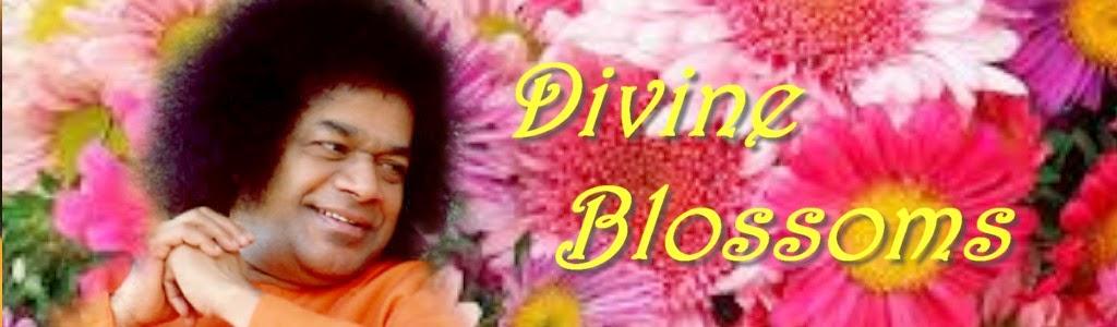 Divine Blossoms