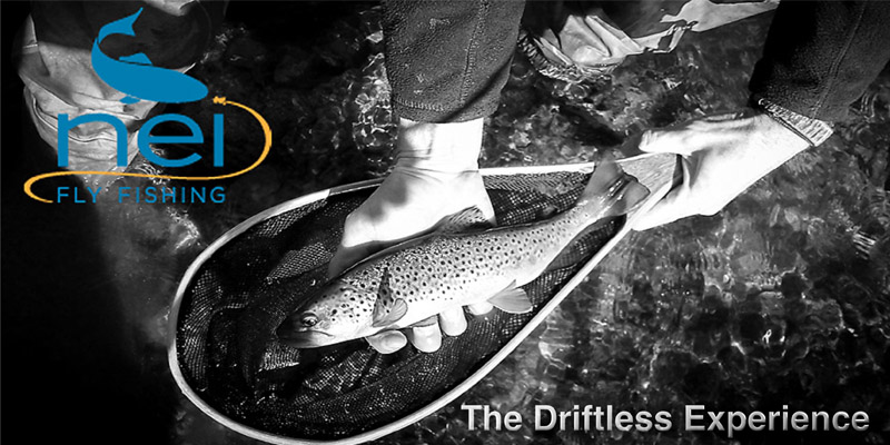The Driftless Experience
