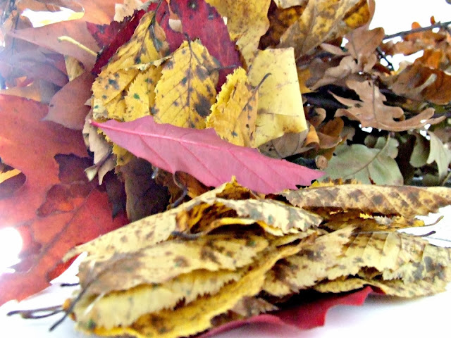 inspiracje na jesień we wnętrzach