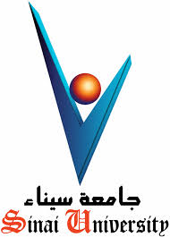 Sinai University own expenses