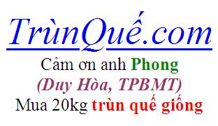 Trùn quế Buôn Ma Thuột