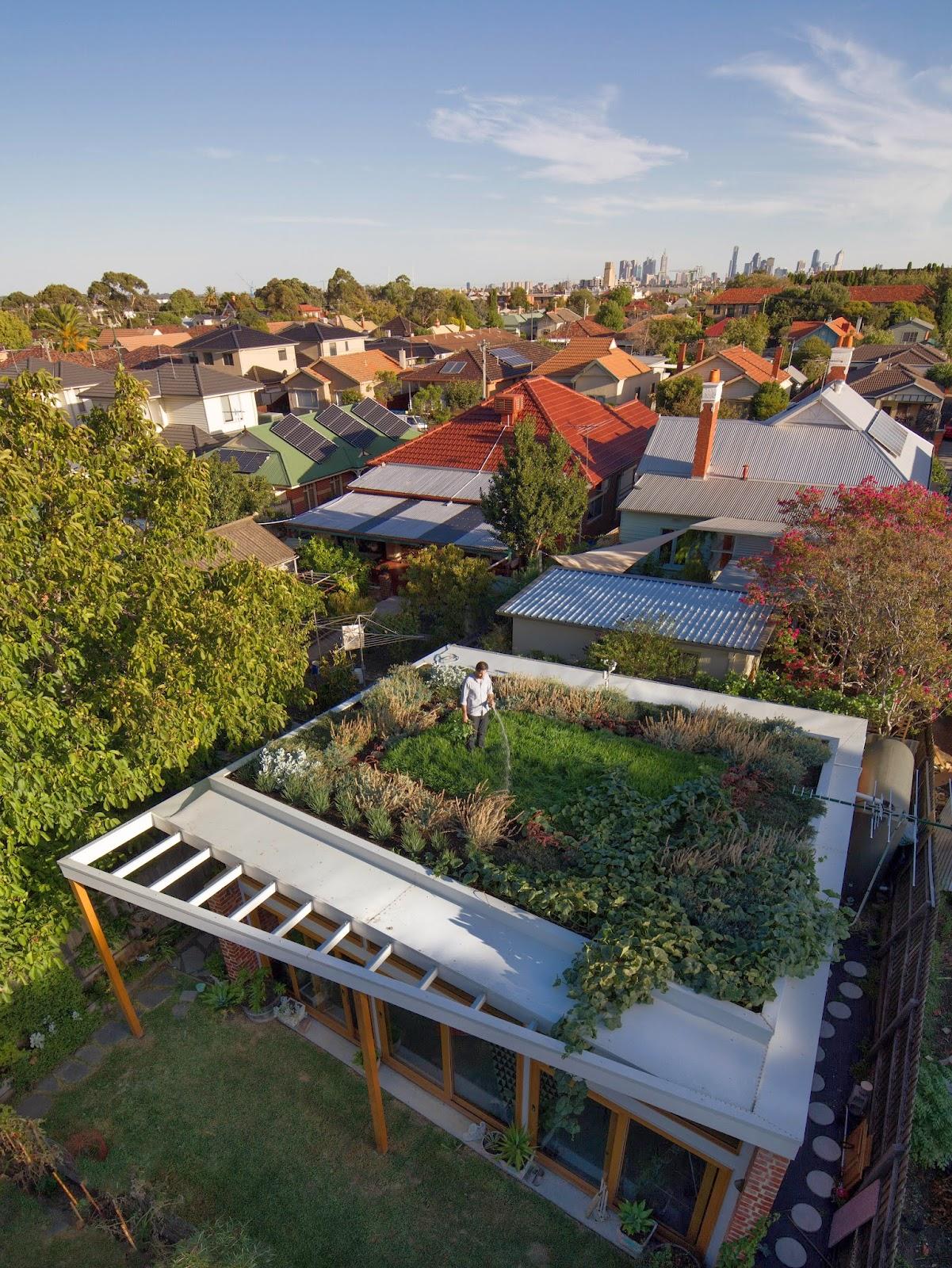 Nachhaltig Bauen mit Dachgarten, Ziegel & Holz!