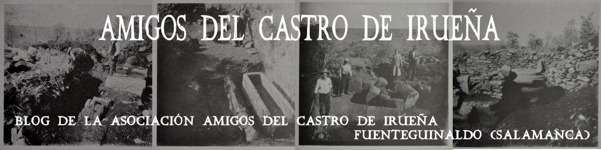 Amigos del Castro de Irueña