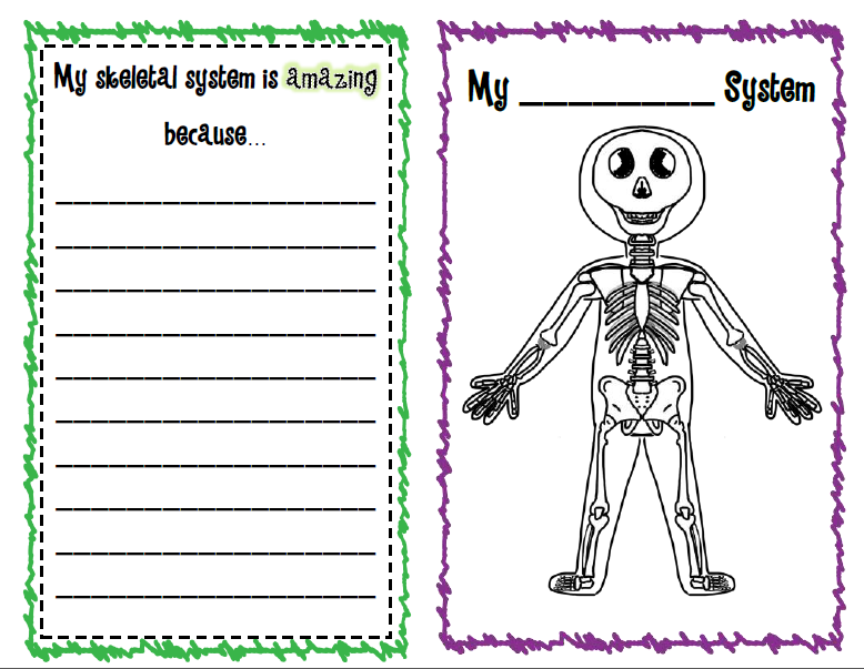 "Search Results for ""Human Body Systems Worksheets ..."