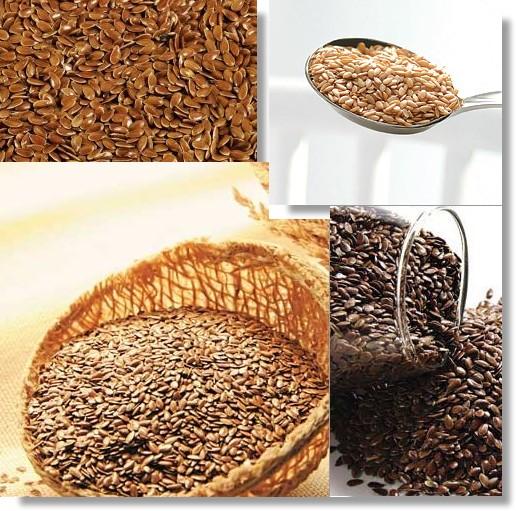 Composição da semente de linhaça:  Proteínas, fibras alimentares e o Ômega 3 e Ômega 6, que lhe dá a propriedade de alimento funcional.  Detalhe: a semente de linhaça é a mais rica fonte de Ômega 3 existente na natureza.